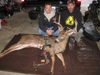kane county - deer 1